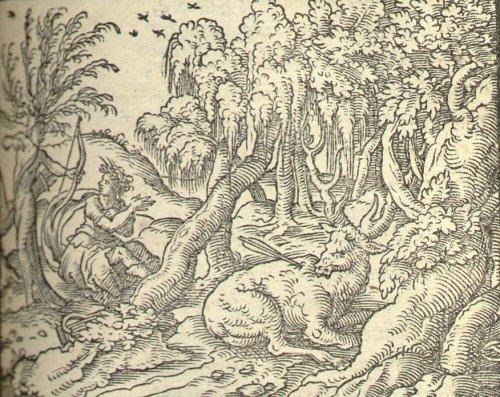 Week 6 Ovid S Metamorphoses