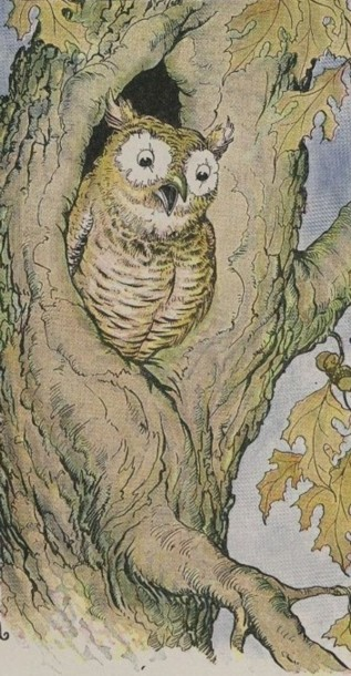 26 The Owl And The Grasshopper Aesop For Children 1919
