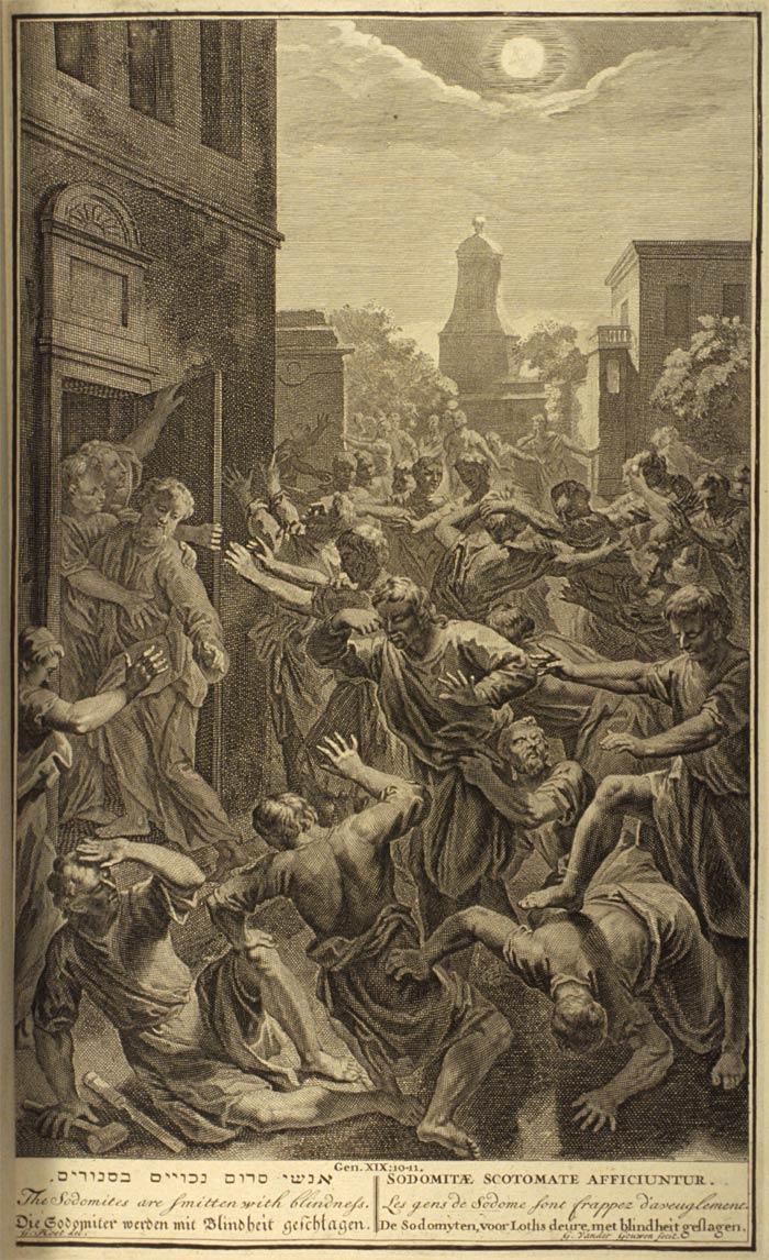 Lahaye Bible